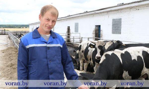 Юрий Юч  — на районной Доске почета